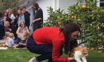 'Yeni Zelanda Başbakanı'nın kedisini ben öldürdüm'