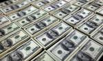 Yurt içi yerleşiklerin döviz mevduatı 234 milyon dolar arttı