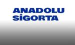 Anadolu Sigorta, Kapıdan Oto Servis hizmeti ile ayağınıza geliyor