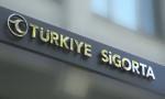 Türkiye Sigorta'da üst düzey atama