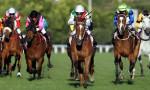 Dünyanın en pahalı at yarışı Suudi Arabistan'da düzenleniyor