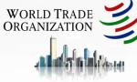 DTÖ: Küresel ticaret bu yılın ilk yarısında sert daralacak