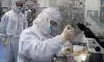 Korona virüsü yenen iki kişi tekrar virüs kaptı