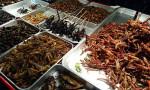 Avrupa'da yeni gıda: Böcek