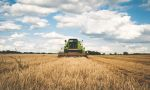 Tarım enflasyonunda artış yüzde 23.35