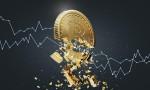 Yatırımcıların yarısına yakını o altcoini Bitcoin'e rakip görüyor