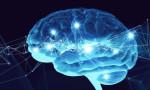 Bilim insanları beyni değiştirebilen yeni bir teknik buldu