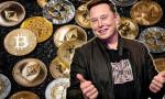 Elon Musk tweet attıkça ABD'liler yatırım yaptı