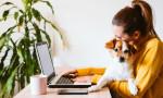 Evden çalışanların yüzde 81'i ofise dönmek istemiyor
