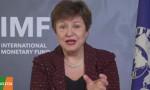 IMF: Sistemik bir borç krizi görmüyoruz