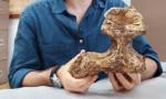 5 milyon yıllık kafatası gerçeği ortaya çıkardı!