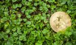 Bitcoin'in gerçekten çevre düşmanı mı?