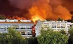 Orman yangınları sigorta kapsamında mı?