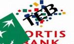 TEB-Fortis birleşmesi leasingle başladı