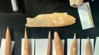 İzmir'de 5 bin yıllık keşif!