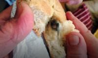 Ekmekten çıkan fare başı davalık etti