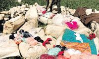 PKK kaçak iç çamaşırı işine de girmiş