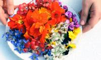 Sevgiliye yenilebilir çiçek!