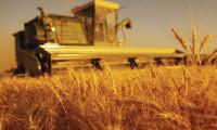 Tarımda La Nina paniği! Enflasyonu körükleyebilir