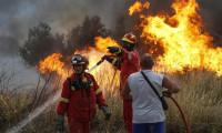 Yunanistan'da orman yangını: En az 60 ölü