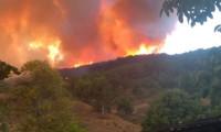 Kastamonu'ndaki yangında flaş gelişme
