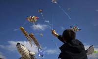 Uçurtma festivalinde facia: 3 kişi öldü