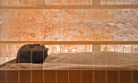 Tutankhamun'un, mumyalanmış yüzü ve ayakları ilk kez görüntülendi