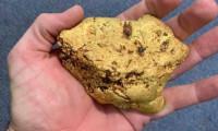 Dedektörle 1.4 kilo altın buldu