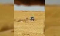 YPG/PKK'lı teröristler o arazileri ateşe verdi