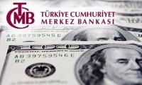 Merkez'in brüt döviz rezervleri 1.6 milyar dolar düştü
