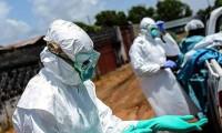 Ebola nedeniyle küresel acil durum ilan edildi