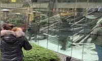 Zorlu Center AVM'de kafenin çatısı çöktü! Olay yerinden ilk görüntüler