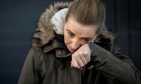 Danimarka Başbakanı vizonlar için özür diledi