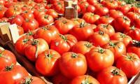 Kasımda domates el yaktı