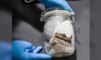 ABD sınırında insan beyni yakalandı