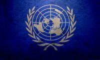 BM'nin kadın erkek eşitsizliği raporu