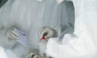 Belgeler sızdırıldı: 96 milyon koronavirüs vakası ve 500 bin ölü
