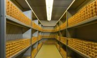 Fonlardaki altın miktarı rekor kırdı