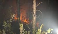 Kartal Aydos Ormanı'nda yangın