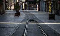 'Ankara, İstanbul ve İzmir'de normalleşme daha sonra'