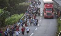 AB'de 2019'da en fazla mülteciyi Almanya kabul etti
