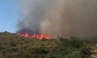 İzmir Alaçatı'da yangın