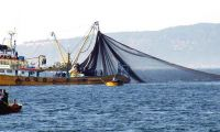 Yasa dışı balık avına 11 milyon lira ceza