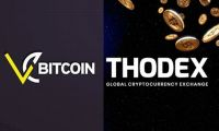Thodex ve Vebitcoin mağdurları ne yapmalı?