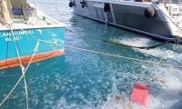 Müsilajdan sonra denizanası işgali!