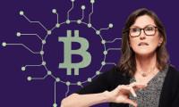 Bitcoin'in yok edilmesi imkansız