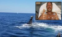 ABD'li dalgıcı balina yuttu