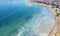 Müsilaj Marmara'da turizmi de vurdu!