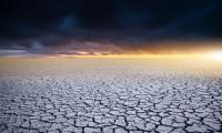 İklim kriziyle mücadelede 6 sıra dışı ve etkili yöntem