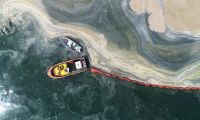 Müsilaj uyarısı: Deniz ölüyor, denizin zamanı yok!